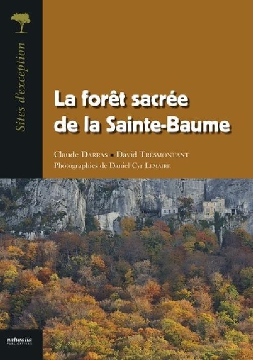 La forêt sacrée de la Sainte-Baume